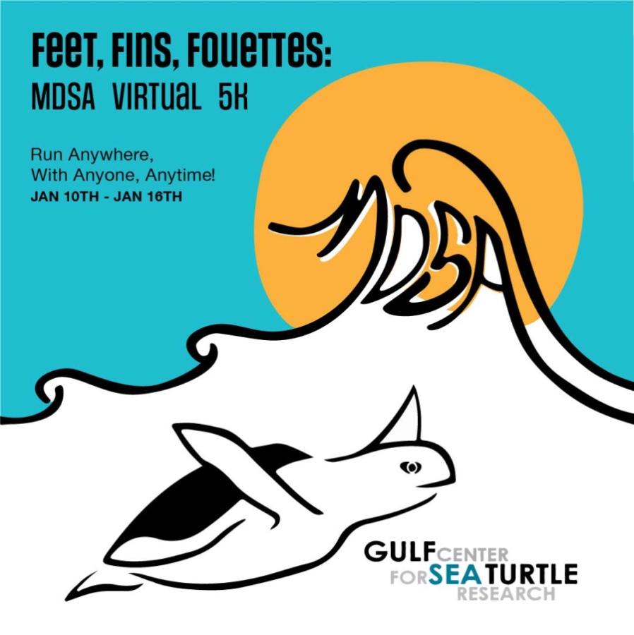 images.raceentry.com/infopages/feet-fins-and-fouettes-virtual-5k-infopages-56957.png