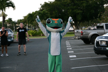 images.raceentry.com/infopages/gecko-gallop-infopages-53282.png