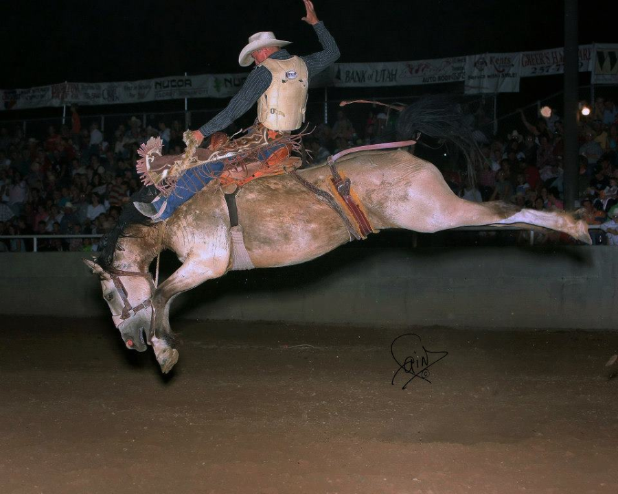 images.raceentry.com/infopages/golden-spike-rodeo-infopages-12534.png