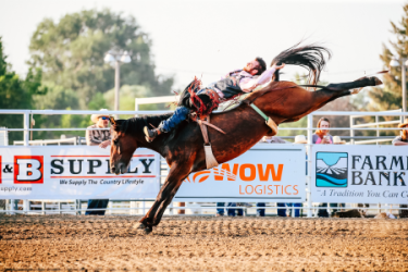 images.raceentry.com/infopages/jerome-county-fair-rodeo-infopages-12494.png
