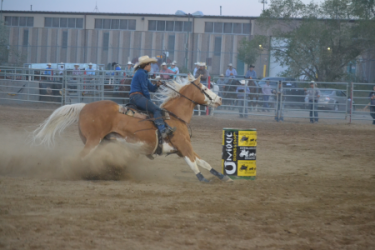 images.raceentry.com/infopages/overland-stage-stampede-rodeo-infopages-12495.png