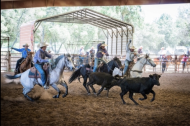 images.raceentry.com/infopages/ranchers-day-rodeo-infopages-12477.png