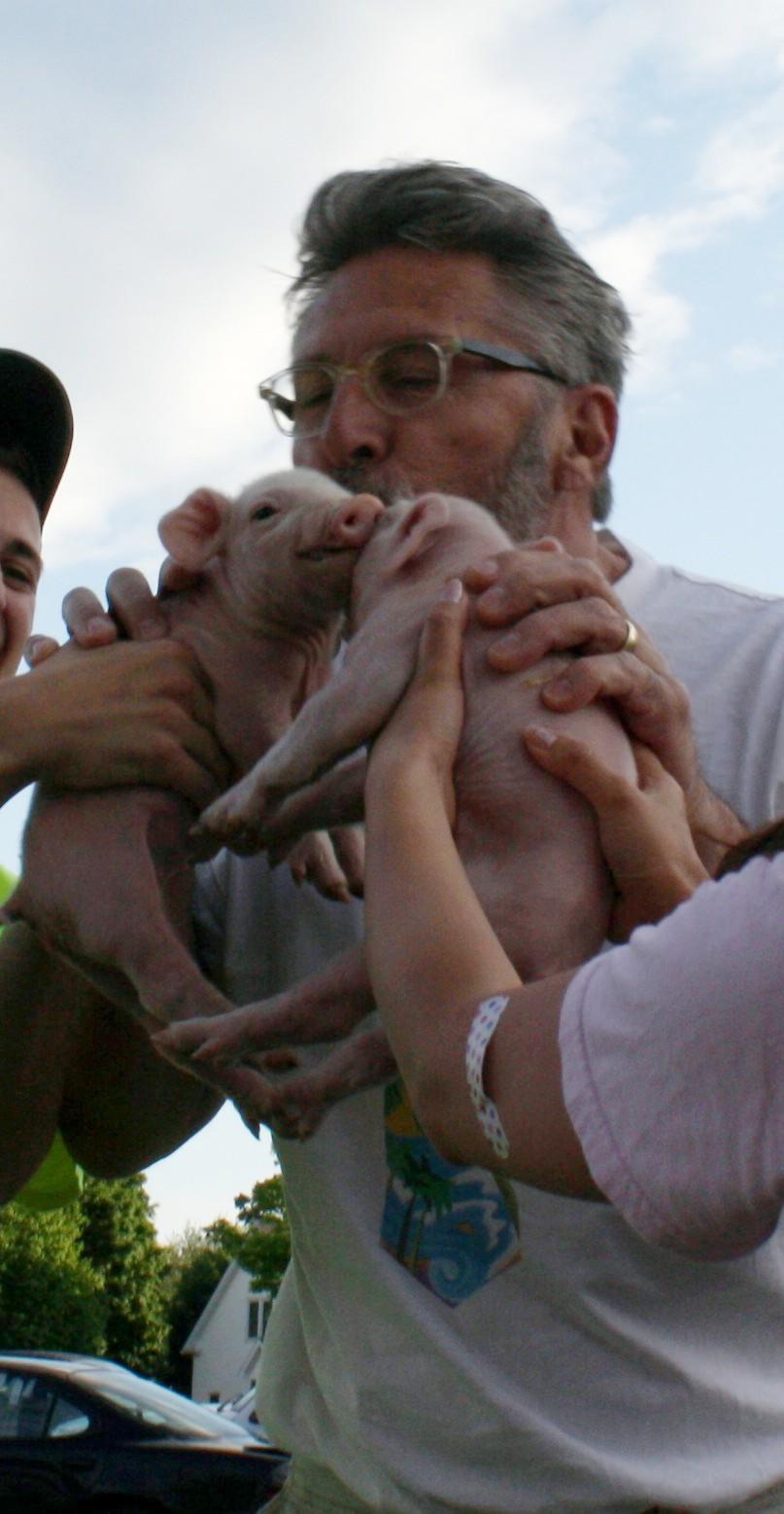 images.raceentry.com/infopages/relay-for-life-pucker-up-pig-run-infopages-1670.jpg