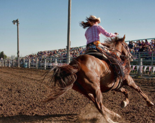 images.raceentry.com/infopages/roughrider-days-rodeo-infopages-12488.png