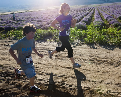 images.raceentry.com/infopages/run-through-the-lavender-5k-infopages-571.jpg