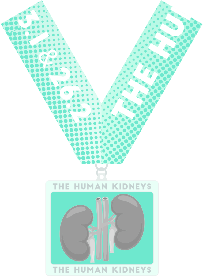images.raceentry.com/infopages/the-human-kidneys-1m-5k-10k-131-262-infopages-56566.png