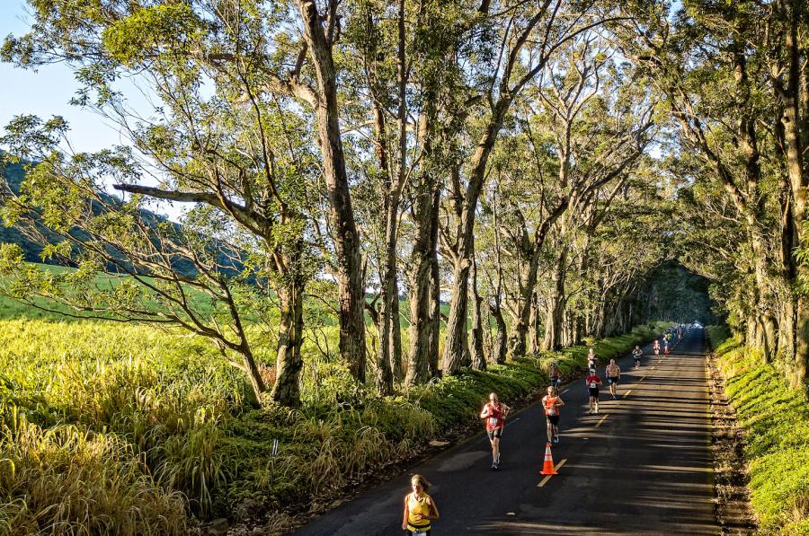 images.raceentry.com/infopages/the-kauai-marathon-and-half-marathon-infopages-10286.png