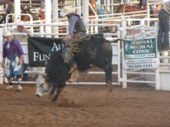 images.raceentry.com/infopages/tops-in-texas-rodeo-infopages-12507.png