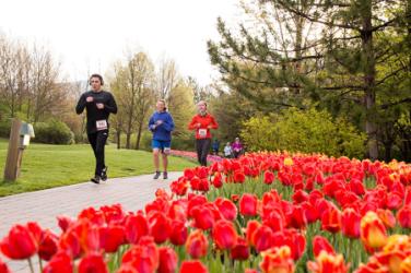 images.raceentry.com/infopages/tulip-festival-half-marathon-infopages-4837.png