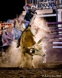images.raceentry.com/infopages/valley-center-stampede-rodeo-and-memorial-festival-infopages-12493.png