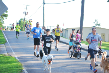 images.raceentry.com/infopages1/dog-days-5k-hattiesburg-infopages1-31163.png