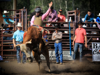 images.raceentry.com/infopages1/lacombe-pro-bull-riding-infopages1-12496.png