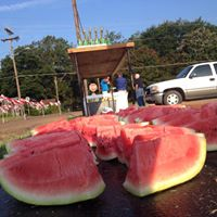 images.raceentry.com/infopages1/louisiana-watermelon-festival-5k-infopages1-52210.png