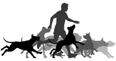 images.raceentry.com/infopages2/dog-jog-minong-wi-infopages2-52999.png