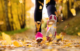 images.raceentry.com/infopages2/fall-foliage-family-5k-walkrun-infopages2-3867.png