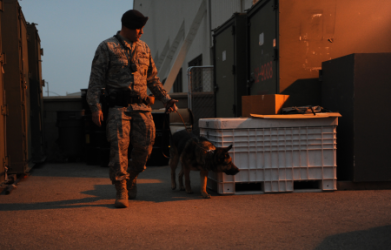 images.raceentry.com/infopages2/military-working-dogs-infopages2-4595.png