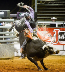 images.raceentry.com/infopages2/nacogdoches-pro-rodeo-and-steer-show-infopages2-12478.png