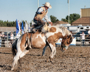 images.raceentry.com/infopages2/roughrider-days-rodeo-infopages2-12488.png
