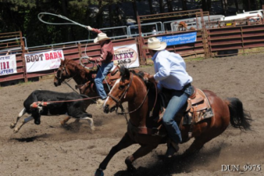 images.raceentry.com/infopages2/russian-river-rodeo-infopages2-12511.png