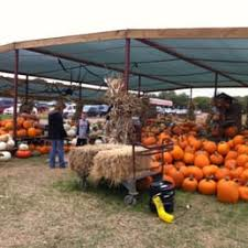images.raceentry.com/infopages2/the-pumpkin-patch-run-mainstay-farm-infopages2-52586.png