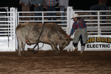 images.raceentry.com/infopages3/k-bar-r-prca-rodeo-infopages3-12479.png