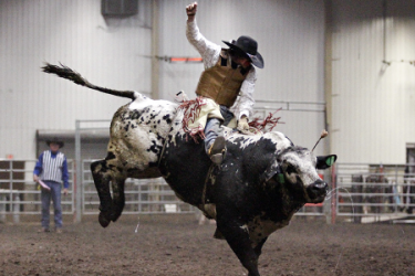 images.raceentry.com/infopages3/lacombe-pro-bull-riding-infopages3-12496.png