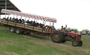 images.raceentry.com/infopages3/the-pumpkin-patch-run-mainstay-farm-infopages3-52586.png
