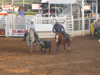 images.raceentry.com/infopages3/tops-in-texas-rodeo-infopages3-12507.png
