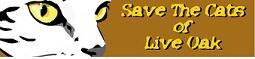 2nd Annual Turkey Day 5K Save the Cats of Live Oak registration logo