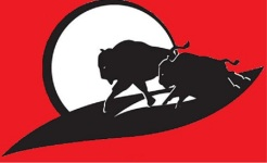 38th Annual Buffalo Stampede 5k/10k registration logo