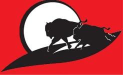 38th Annual Buffalo Stampede 5k/10k registration logo