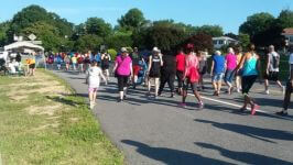 Annual Daring the Blaze VIRTUAL 5K Run/Walk registration logo