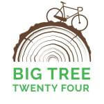Big Tree 24 registration logo