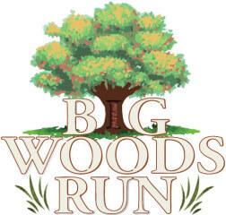 Big Woods Run - 2020 registration logo
