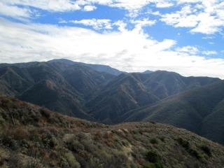 2020-billy-goats-half-marathon-hill-climb-registration-page