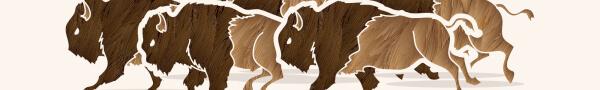 2019-bison-100-registration-page