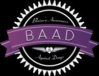 Blaize'N Trails - New York registration logo