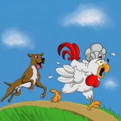 Chicken Fry Run registration logo