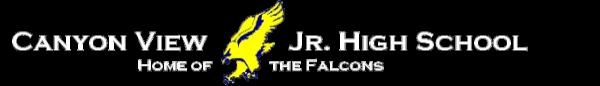 Falcon Fun Flight 5K registration logo