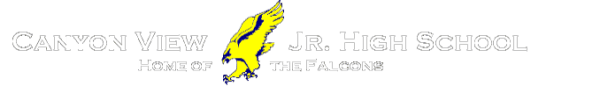 Falcon Fun Flight 5K registration logo