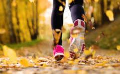 Fall Foliage Trail Run registration logo