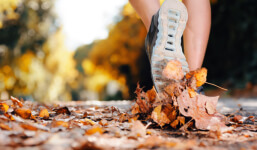 Pumpkin Spice Run registration logo