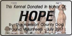 Harrison County Dog Pound Donation 5K registration logo