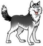 Husky Hero Run registration logo