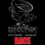 Spring InSANDity registration logo
