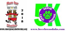 Lead Serve Inspire NHS 5K registration logo