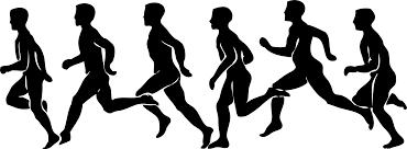Light the Night for Laci 5K/Fun Run/Virtual Run registration logo