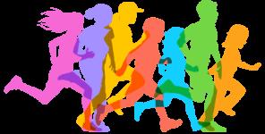 LSD 5K Color Run registration logo