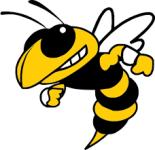 MES Hornet Hustle registration logo