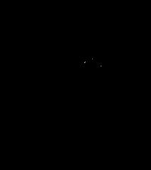 Mini-Cassia Turkey Trot registration logo